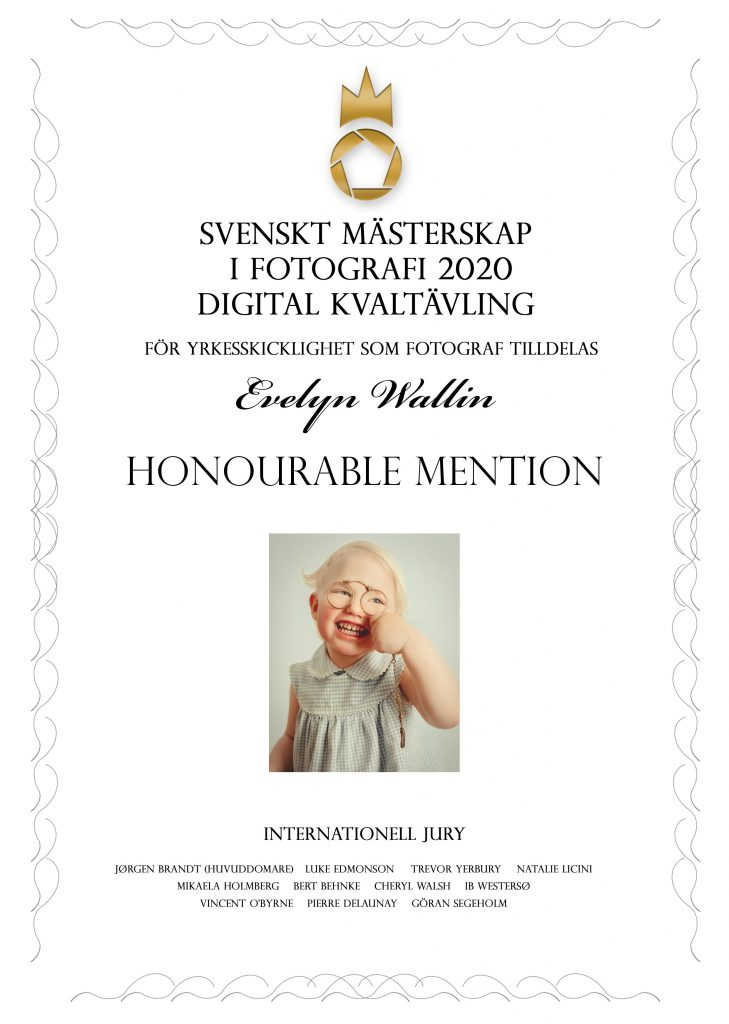 finals, honourable mention in swedish championship of photography