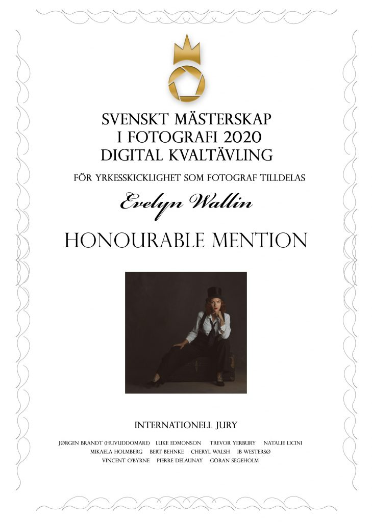 finals, honourable mentions in swedish championship of photography