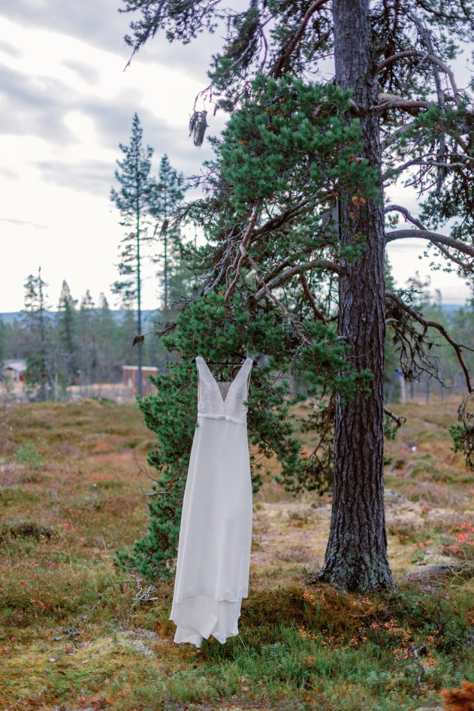 mountain waterfall elopement bridal dress hanging in a pinetree